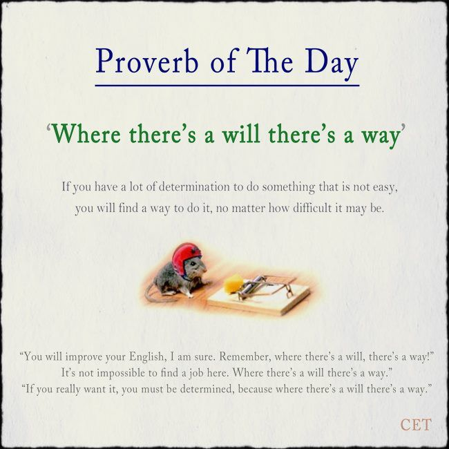 essay on proverb of english