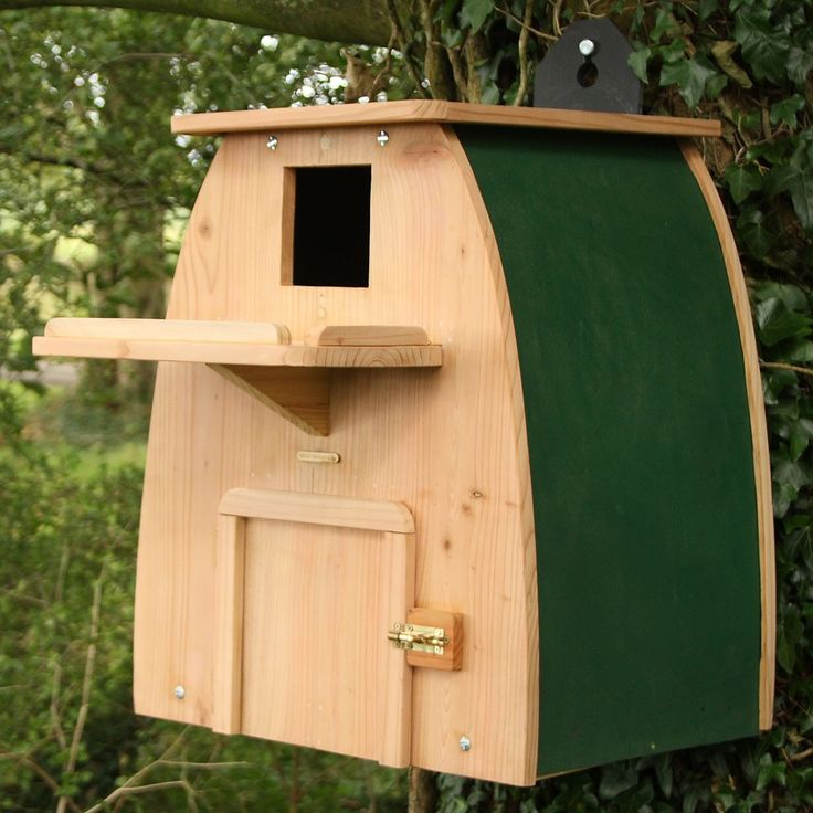 Best 25+ Owl nest box ideas on Pinterest | Owl box, Owl ...