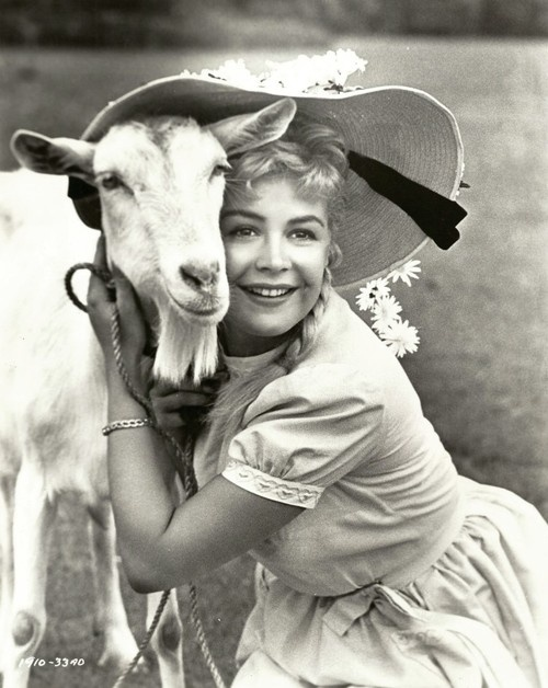 Sandra Dee & goat in Tammy Tell Me True