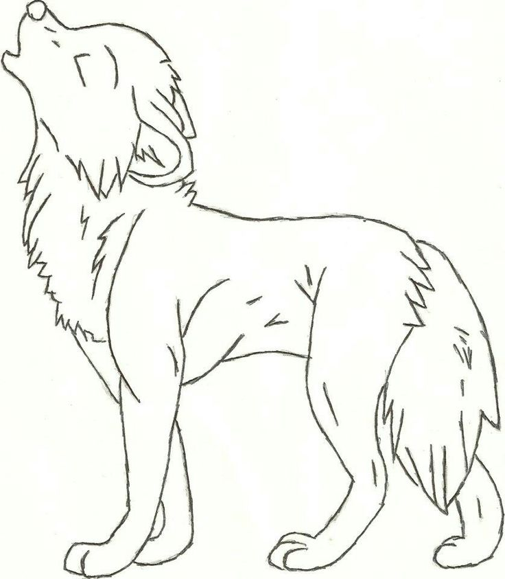17 best ideas about Wolf Drawing Easy on Pinterest | Anime wolf ...