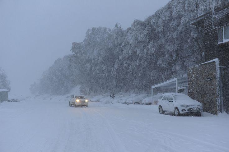 Just after the Blizzard Falls Creek. www.australianphotos.com.au