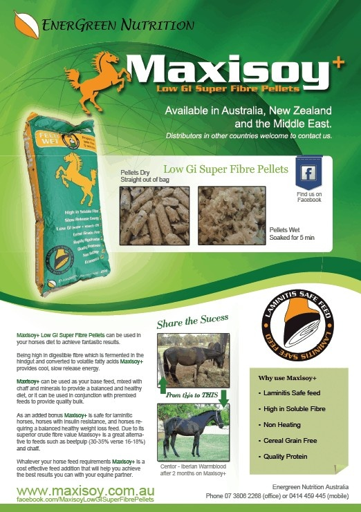 ... Low GI Fibre Pellets proved a balanced and healthy diet for your horse