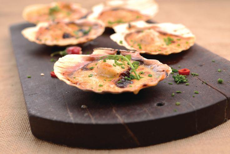 Receita de Vieiras gratinadas. Descubra como cozinhar Vieiras gratinadas de maneira prática e deliciosa com a Teleculinaria!