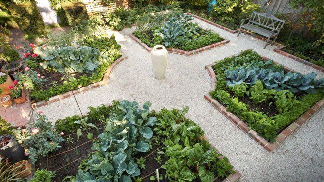 Inner-city vegie garden                                                                                                                                                                                 More