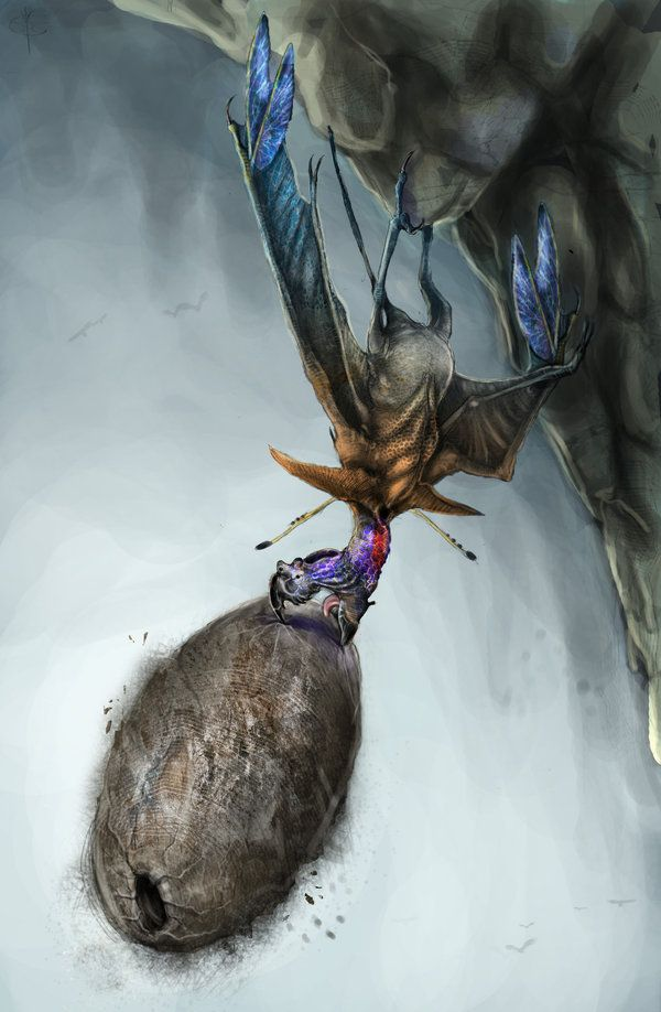 Ragnarok X Crona 17+ best images about ...