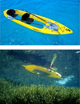 Try clear bottom kayaking or snorkeling to see the treasures below in Door County, or the Chain of lkes in Waupaca