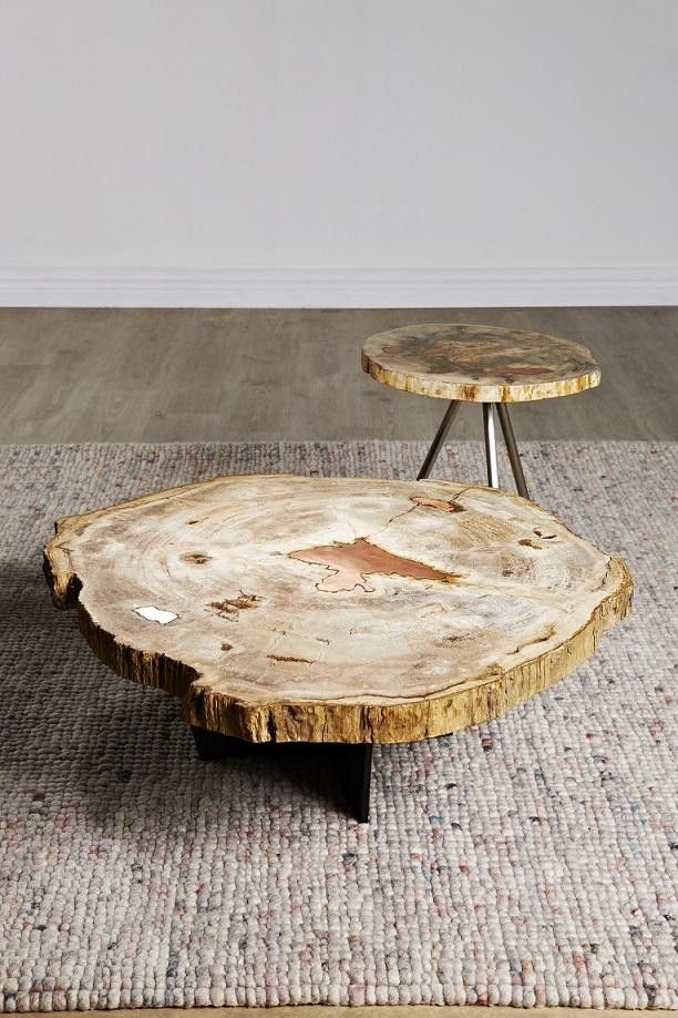 Petrified Wood Coffee Table from Curious Grace