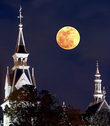 "To me, Mercer University is one of the only places where the ""moonlight and magnolia"" hype is actually appropriate."