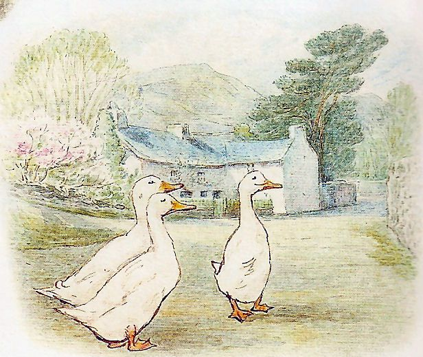 """Beatrix Potter. Tom Kitten. """"They stopped and stood in a row, and stared up at the kittens. They had very small eyes and looked surprised."""""""