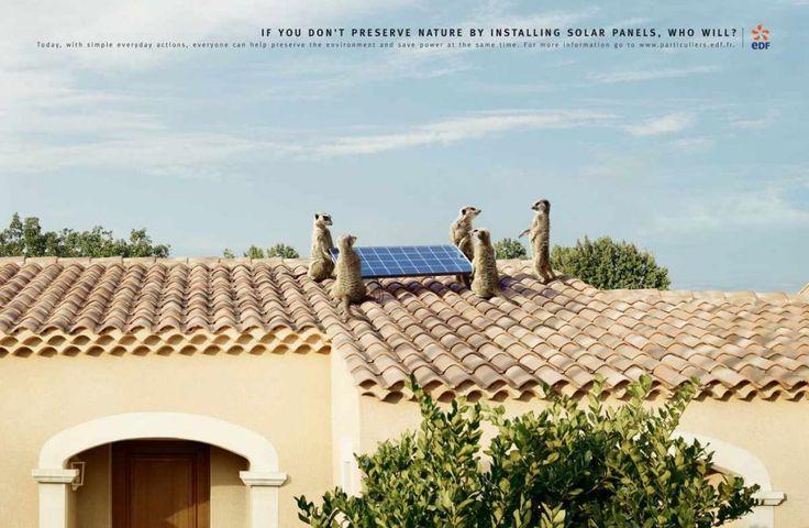 Las campañas publicitarias más creativas para la protección del medio ambiente