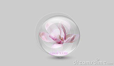 Crystal clear magnolia translucid company logo