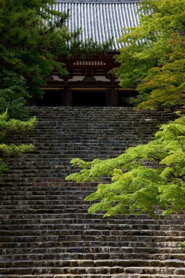 Jingoji temple in Kyoto, Japan   高雄の神護寺 #日本 #京都