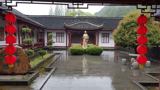 Dragon Well - Longjing