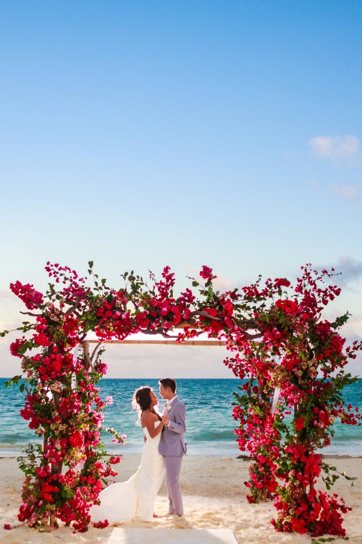 beach wedding in new jersey%0A Over grown flower arch on the beach