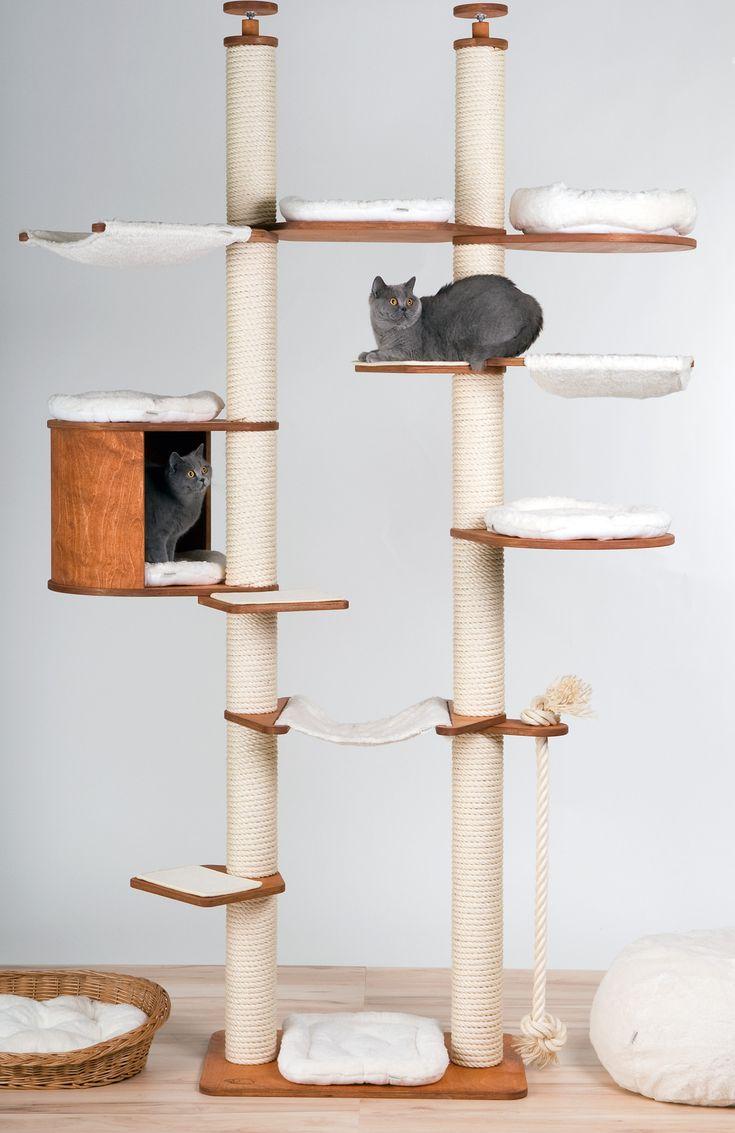die besten 25 kratzbaum deckenspanner ideen auf pinterest kratzb ume katzenkratzbaum und. Black Bedroom Furniture Sets. Home Design Ideas