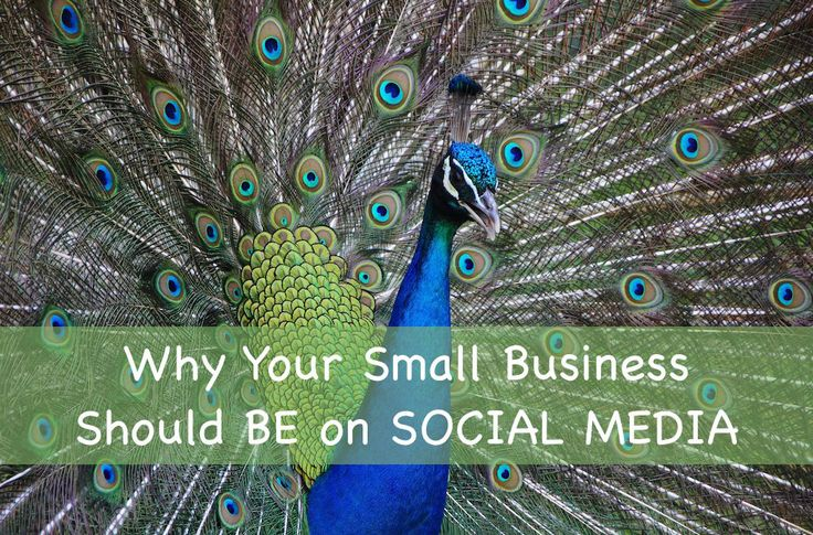 Why Small Business Should Use Social Media