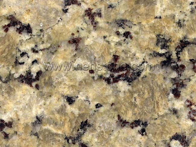 Best Placement Of Butterfly Beige Granite Concept Djenne