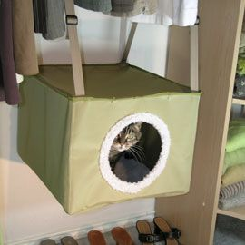 - Kittywalk Closet Sleeper.  Cute idea for a kitty hide away