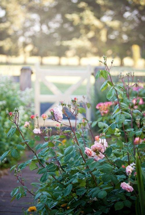 Great garden gate idea