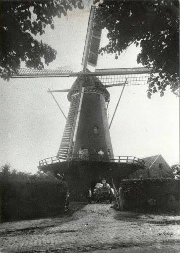 De molen het Fortuyn, gebouwd in 1800, op de hoek van de Bavelselaan en de huidige Kerkhofweg (ook wel Molenstraat genaamd), 1923.