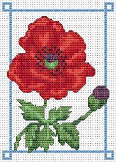 June poppy free cross stitch chart | Amanda Gregory cross-stitch design