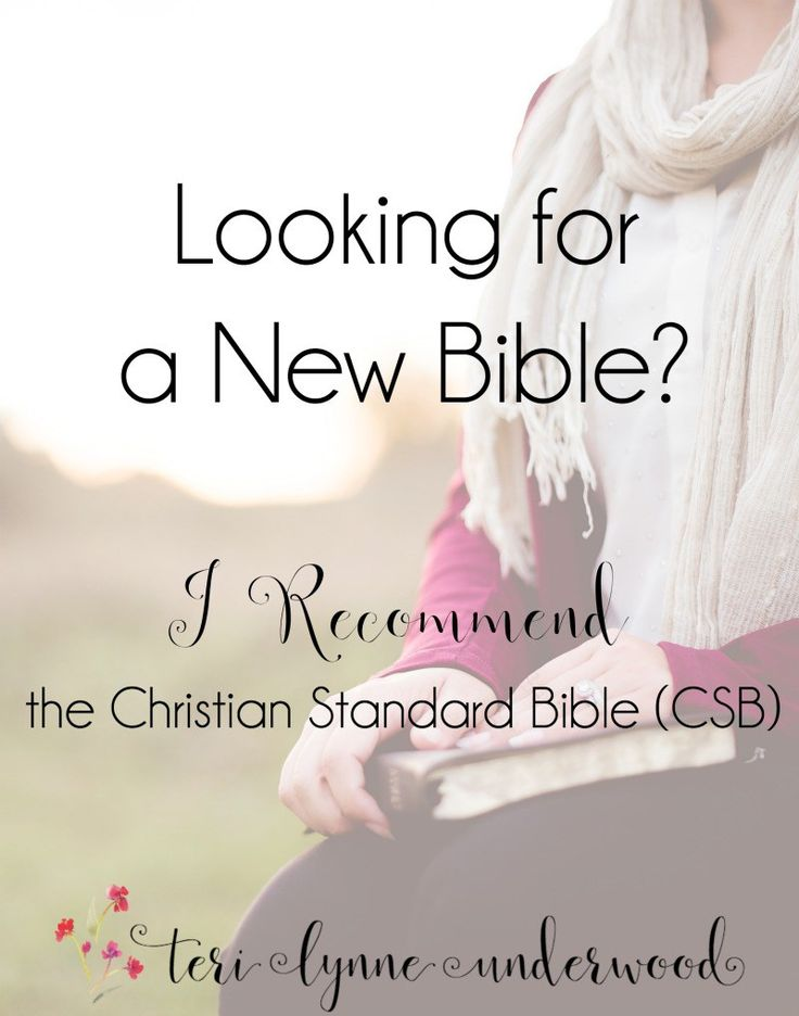 If you are looking for a new Bible, either for study or general use, I recommend the Christian Standard Bible (CSB). Both readable and accurate, the CSB has editions for every age range and preference.