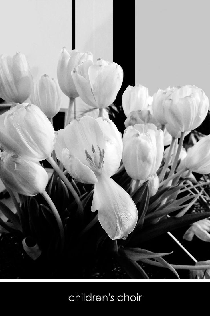 children's choir - florist donaflor