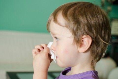 Le #allergie #casalinghe sono frequenti, sfidiamole con #farmaci e impegno