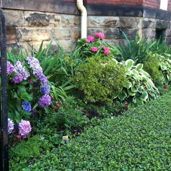 Garden Ideas Perth 29 best postage stamp garden images on pinterest | garden ideas