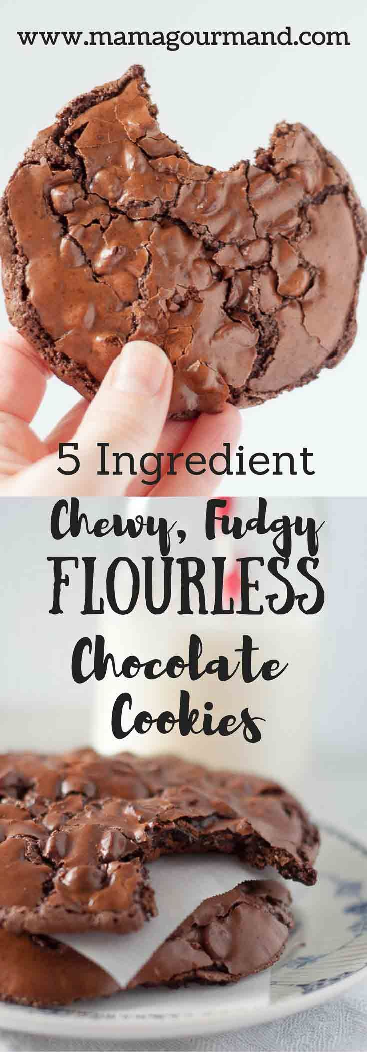 Chewy, Fudgy Flourless Chocolate Cookies are a naturally gluten free chocolate cookie with only 5 ingredients. These flourless cookies are life changing!http://www.mamagourmand.com via @mamagourmand