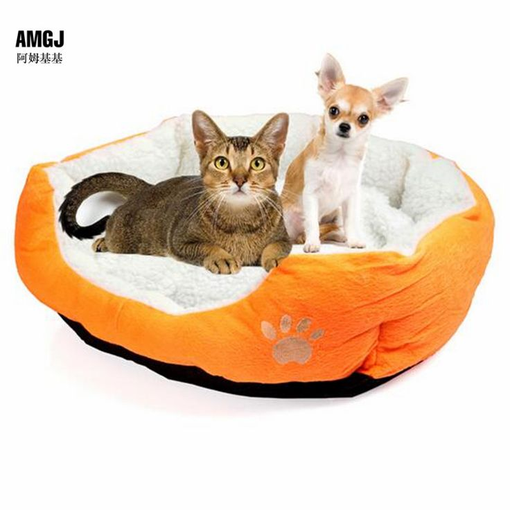 50*40CM Cute Soft Dog Cat Bed Cotton Warm Winter House Pet Products Mini Puppy Pet Dog Cat Soft Comfortable Sofa // FREE Shipping //     Get it here ---> https://thepetscastle.com/5040cm-cute-soft-dog-cat-bed-cotton-warm-winter-house-pet-products-mini-puppy-pet-dog-cat-soft-comfortable-sofa/    #dog #dog #puppy #pet #pets #dogsitting #ilovemydog #lovedogs #lovepuppies #hound #adorable #doglover