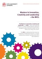 City London U: MAster  Innovation Creativity Leadership