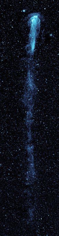 ¿Una estela de una estrella?  Científicos se sorprenden al descubrir que una estrella que viaja muy rápido, pueda dejar una especie de huella de condensación. Mira (MY-rah) es una estrella que los científicos han estudiando durante 400 años. El telescopio Galaxy Evolution Explorer de la NASA capturó una imagen de Mira. Mostró que Mira tiene una larga cola de polvo y gas ¡que mide 13 años luz de largo! ¡Esto es 20,000 veces la distancia media entre el Sol y Plutón!