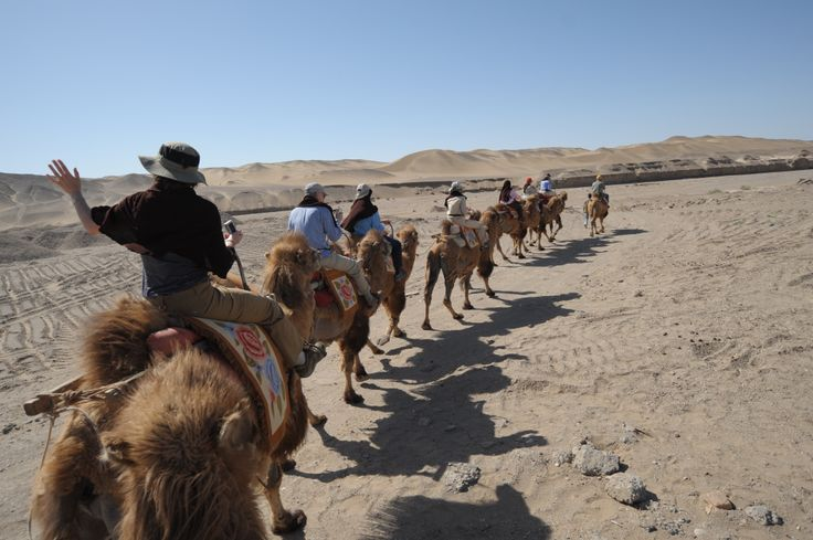 Experience how Silk Road merchants used to travel across the Gobi Desert.