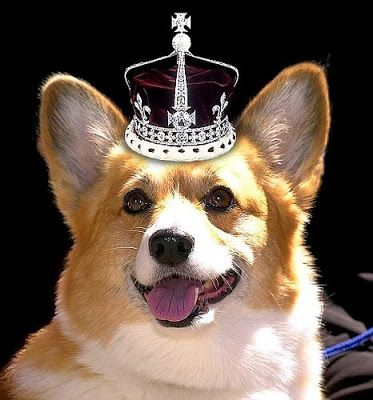 Today's post is dedicated to the past and present royal Corgis of H.R.M. Queen Elizabeth II, the world's most famous Corgi lover. The Queen's recent decision to stop breeding her royal Corgis signals the end of an era. It's difficult to imagine the expanses of Buckingham or Balmoral without those merry little legs, isn't it? [...]