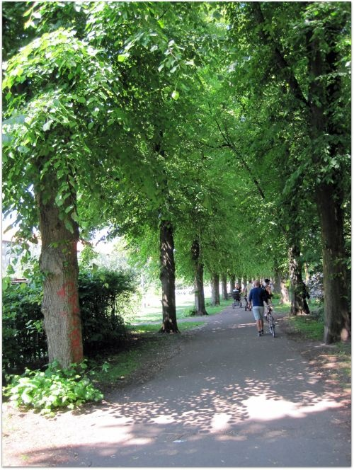 Nørrebro Park