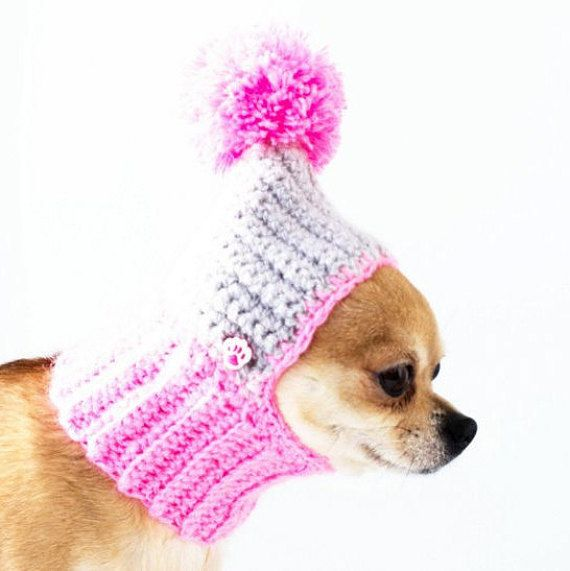 37 best Gorritos Yorkshires images on Pinterest   Doggies, Pets and ...