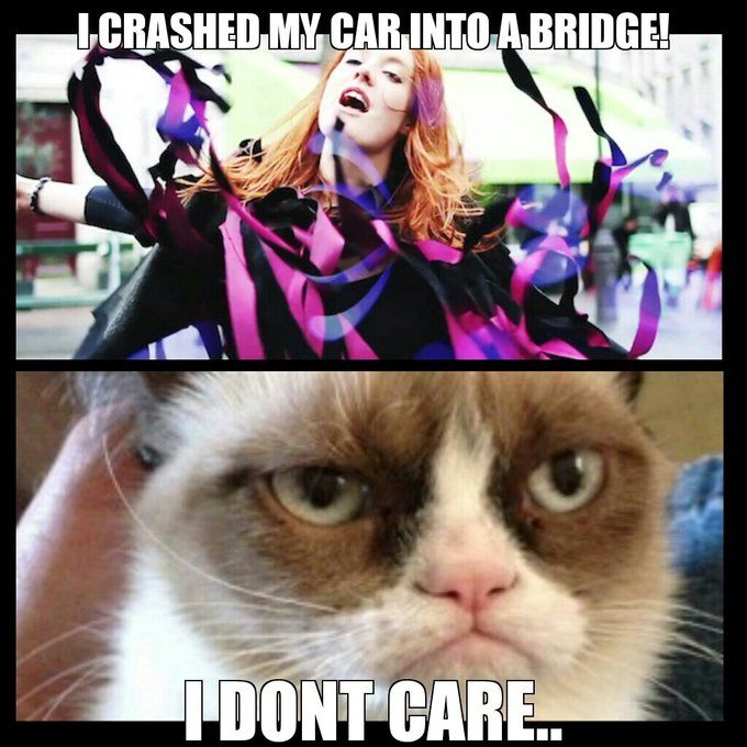 Grumpy Cat sings with Icona Pop