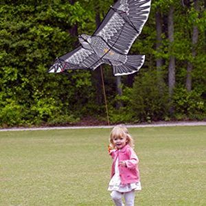 Flying-Eagle-Kite-Kit-by-LIVERTOL-High-Quality-Strongest-Bird-Shaped-Flying-Kite-for-Kids-and-Adults-5-Foot-Wingspan-of-Flying-Eagle-Easy-to-Assemble-Fly-Store-with-Carrying-Case-0-1