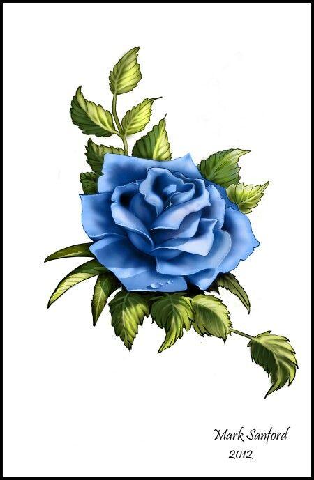 Blue Rose.  Love the colour.