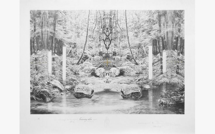 Becc Ország - Sanctuary of the Undergrowth,  graphite, carbon pencil and 24kt gold on paper, 49x39cm 2016