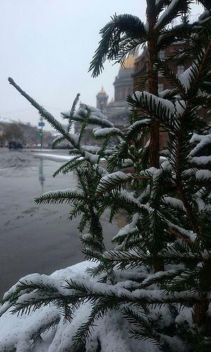 Winter Petersburg.  #saintpetersburg #Russia #saintisaacscathedral #snow #November #winter #beautiful #vscospb #vscorus #vsco #vscocam #Petersburg #weekend #mylife #Russland #Hauptstadt #samstag #herbst #platz #schön #heute #sonnabend