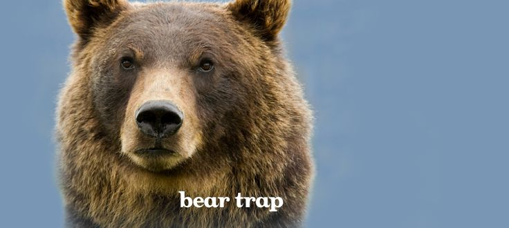 Bear Trap by DavidsTea
