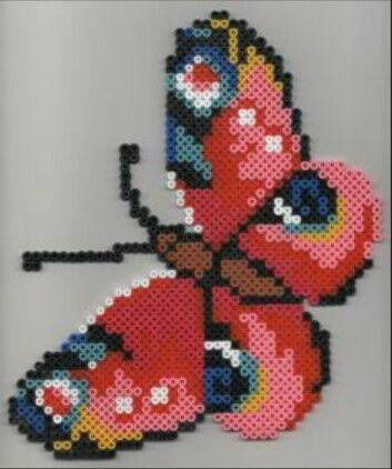 Una grandissima farfalla