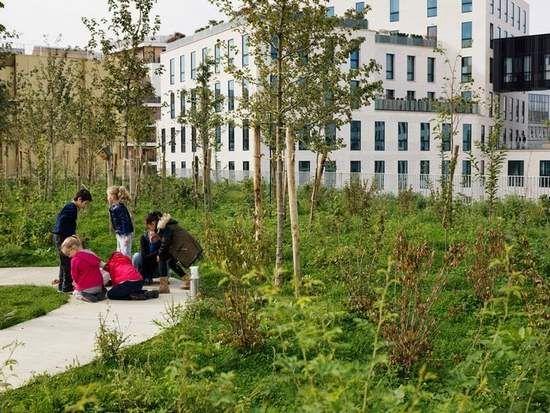 Uma escola de telhado verde na periferia de Paris