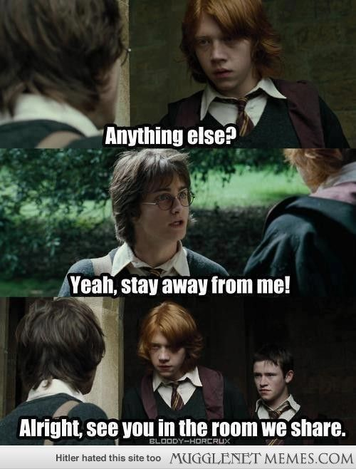 Funny Harry Potter And Hermione Memes : Ha harry potter memes and funny pics mugglenet