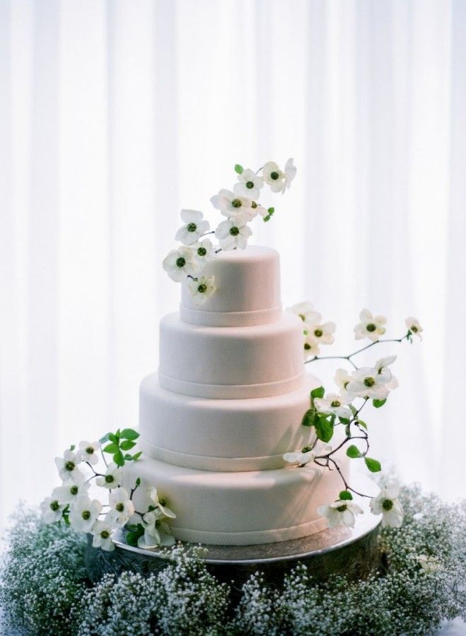 wedding cakes los angeles prices%0A classy modern all white wedding cake with dogwood flower decorations