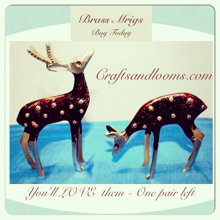 Brass Mrigs : Brass Deers : beautiful loveable pair. Made of brass , a decent showpiece, a gift or a return gift. Gift of love. Add it to your home decor . Full of life. Buy these at craftsandlooms.com ....... #brass #showpiece #decorative #giftitem #gift #giftoflove #love #family #returngift #instashop #instalike #instalove #instaindia #craft #art #brasscraft #madeinindia #india #indiapictures #online #shop #photooftheday #handicraft #madebyhand #handmade #follow