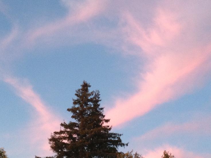 Rose colored clouds