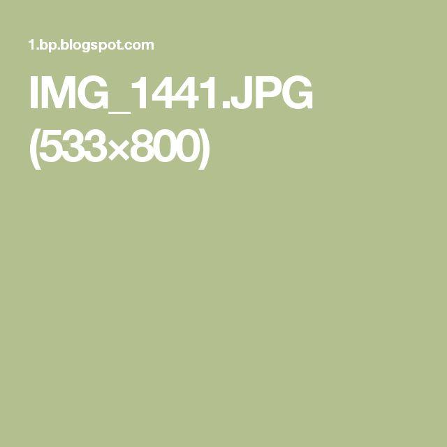 IMG_1441.JPG (533×800)